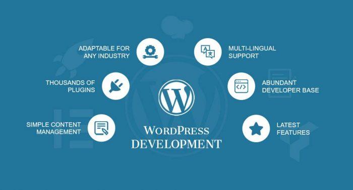 Wordpress hỗ trợ nhiều plugin thiết kế website, chuẩn SEO