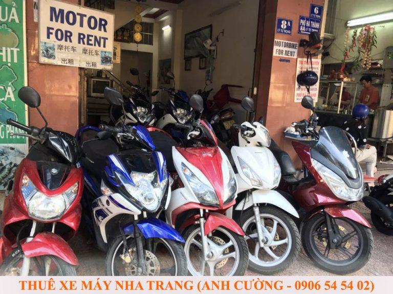 Dịch vụ cho thuê xe máy Anh Cường Nha Trang: Uy tín – Chất lượng – Giá tốt